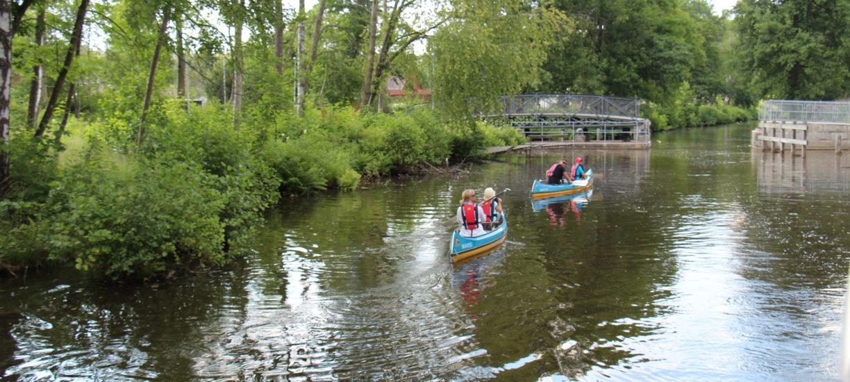 Paddla kanot på Strömsholms kanal